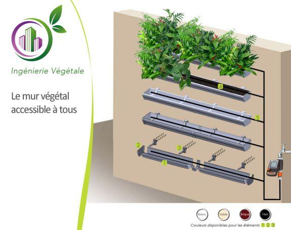 greenflex-vegetalisation-verticale-terraflore